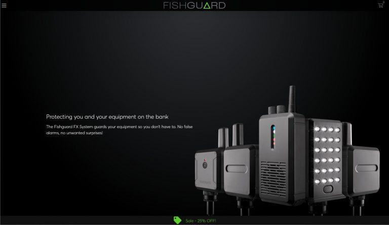 fishguard-website-design