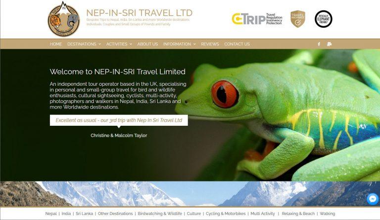 nepinsri-travel-website-design
